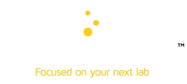 Team Lab Projects
